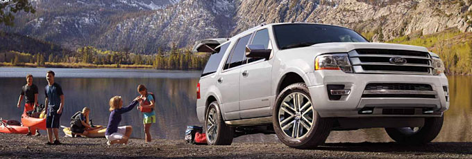 2016 Ford Expeditions for sale in Edmonton