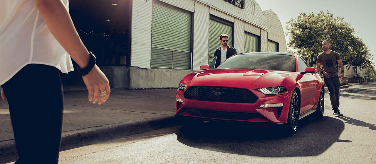 2019 Ford Mustang for sale in Edmonton