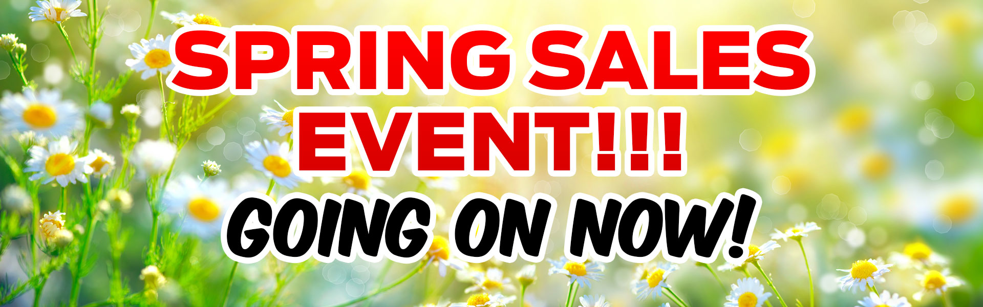City Ford Spring Sales Event